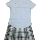 Checked Skirt & Summer Blouse